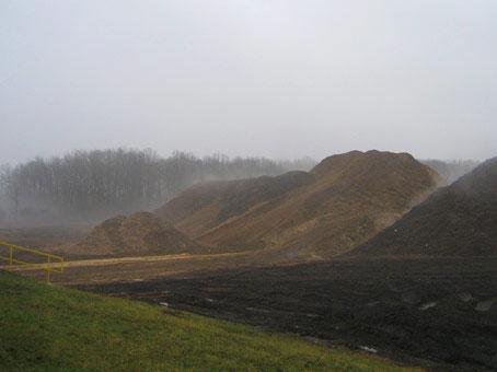 news_biomass_01